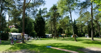4-sterrencamping